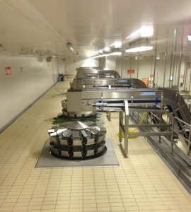 Vegetables washing and packaging line